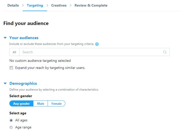 Twitter Audience setup
